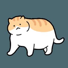 太った猫はかわいい (English)
