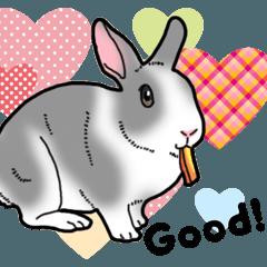 [LINEスタンプ] もふもふウサギ 5 #ハートフル