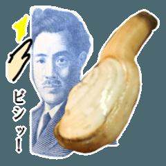 【実写】ミル貝