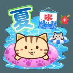 ネコちゃん ハムちゃん 夏の思い出
