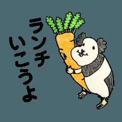 関西弁のモルモットすくちゃんと仲間たち