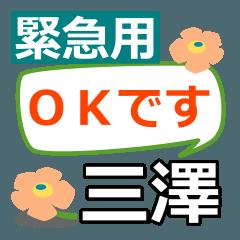 取急ぎ返信用【三澤,みさわ,misawa】専用