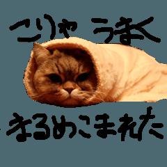 竹内シンバ