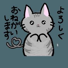 ネコのスタンプ♪