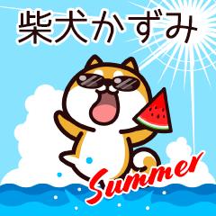 柴犬かずみの夏
