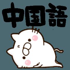 中国語 読み 和訳付き にゃんこ
