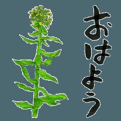 草花生活スタンプ