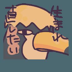 [LINEスタンプ] 生暖かい目のオオハシさん