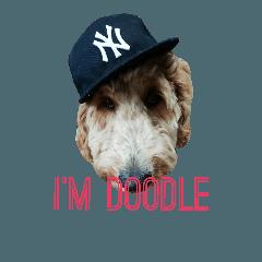 僕はドゥードル