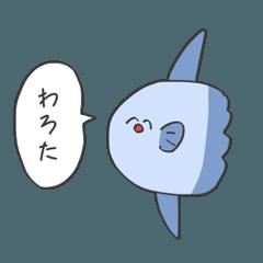 喋りかけてくる海の生き物