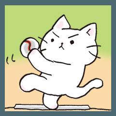 猫ピッチャー(再登板)