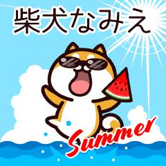 柴犬なみえの夏