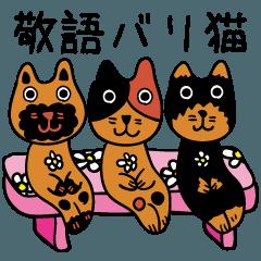 敬語バリ猫 エスニック アジアン