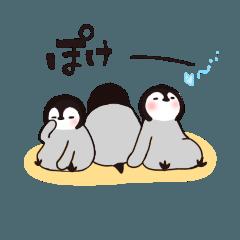 のんびり屋さんな子ペンギン