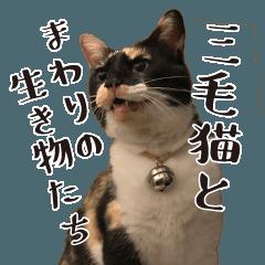 三毛猫ちゃんと周りの生き物スタンプ