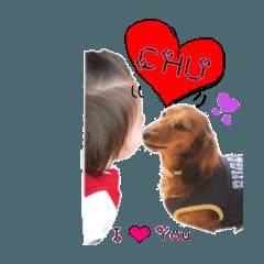 (実写)りくたん&ダックス【日常編】