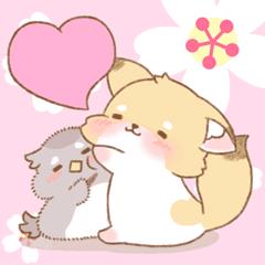 愛らしいディンゴとフクロウ