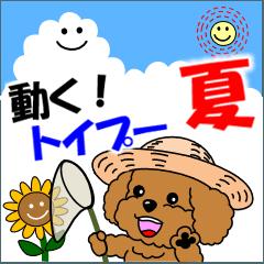 動く!トイプー22「夏」