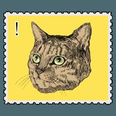 [LINEスタンプ] リアルタッチな猫と魚+α