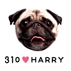 310Harry