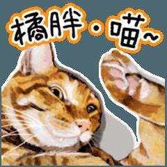 [LINEスタンプ] キッタ猫♡働きたくない