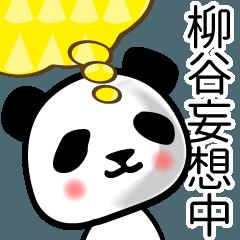 [LINEスタンプ] 柳谷■面白パンダ名前スタンプ