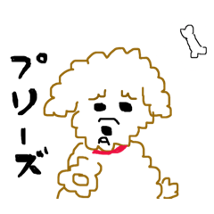 [LINEスタンプ] 手書きトイプードル 毒舌編