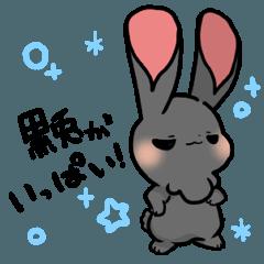 [LINEスタンプ] 黒兎と白兎 -黒兎がいっぱい!-