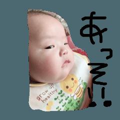 [LINEスタンプ] シキノ
