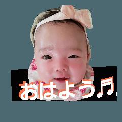 [LINEスタンプ] しゅのんかのんスタンプ