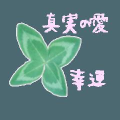 [LINEスタンプ] 草花の花言葉