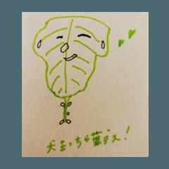 [LINEスタンプ] 犬まっちゃ葉